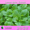 Fatory supply pure lemon balm extract powder / 2%~ 8% rosmarinic acid