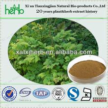 ISO triterpene glycosides high quality black cohosh p.e