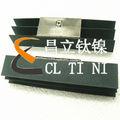 Piscina con cloro del ánodo de titanio/del ánodo de titanio generador de la sal