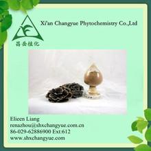 Natural Coriolus versicolor polysaccharide powder 30% 50% Coriolus versicolor extract