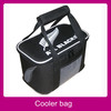 big bicycle non-woven wine bottle cooler bag