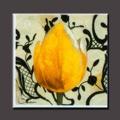 100% Handmade tulip fotos modernas de pintura a óleo da flor