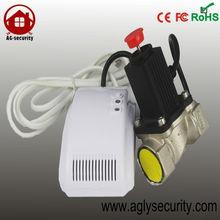 AC powered Natural LPG Gas Detector with Solenoid valve lock gas meter