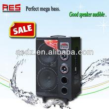 2.0 CH subwoofer MP3 10 inch full range speaker with USB/SD/FM function