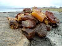 natürliche baltischen bernstein