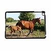 Sublimation plastic case for iPad Mini
