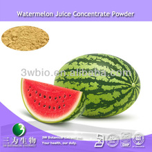 High quality 4:1 10:1 watermelon extract