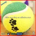 cão de estimação de bola de tênis