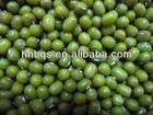 New Crop Organic Green Mung Beans