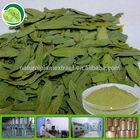 sennosides powder senna leaf extract senna leaf