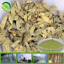 GMP sennosides powder organic senna leaf extract