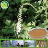 triterpene glycosides powder black cohosh extract black cohosh root extract