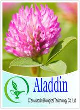 Supply Red Clover Isoflavones extract of Genistein/Trifolium pratense extract