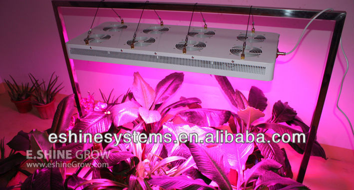 Promotion activity of 3G series 800w led grow lighting full spectrum 11-bands CE,ROHS, UL for hydroponics led grow lighting