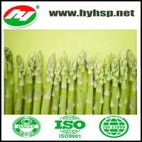 Frozen Green Asparagus from green farm
