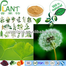 GMP Manufacturer High Quality &100% natural plant extract powder