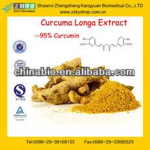 GMP Factory Supply Pure Curcuma Longa Rhizome Powder Extract
