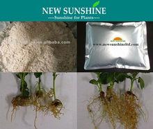 Heteroauxin IAA hormonal powder for rooting