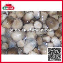 2015 new crop best canned new ingredient 425g straw mushroom