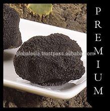 Spanish Truffles (Tuber Melanosporum) - Frozen