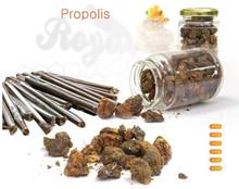 Natural Powder Propolis