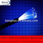 PMMA Multi Core End Glow Celling Light