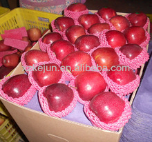 2014 new crop fresh huaniu apple