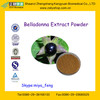 Natural Belladonna Leaf Extract Atropine and Hyoscyamine from GMP Manufacture