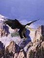 beautiful flying eagle 3d imagens de animais