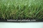 green carpet BN35218120