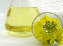 Refined Canola Oil - Also known as Rapeseed Oil