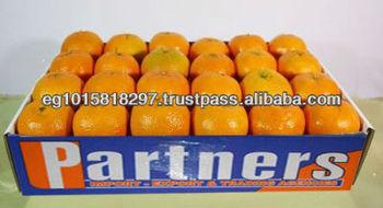 fresh citrus fruit mandarin