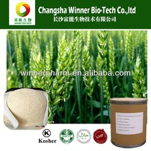 100% Natural Barley Malt Extract,Fructus Hordei Germinatus Extract,Germinated Barley Extract as Raw Material for Food&Beverage