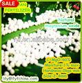 óxido de magnésio fertilizantes/mgo fertilizantes/c-mgo fertlizer