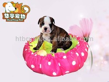 The new popular sponge kennel