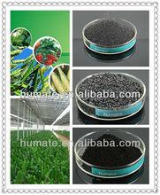 Plant Grow Promotor Seaweed Extract