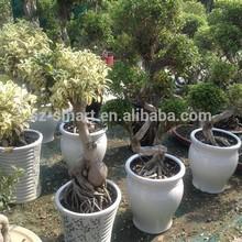 Old design ceramic garden pots