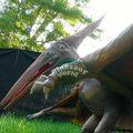 nomes de parque de diversões passeios dinossauro para kiddy halloween necessidades