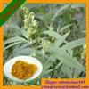 Food Supplement Semen Cannabis P.E./ Hemp Seed P.E.