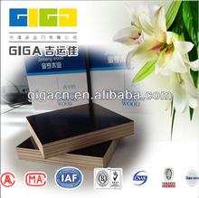 China poplar wbp glue plywood species