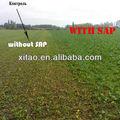 Polímero acrílico/sap de potasio/super absorbentes del polímero para la agricultura