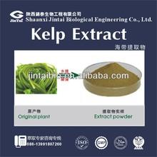 10% powder bladderwrack seaweed kelp extract