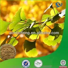 natural ginkgo extract /100% natural ginkgo biloba extract/natural ginkgo biloba leaf extract