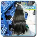 natural bruto brasileiro remy do cabelo humano extensão rabo de cavalo