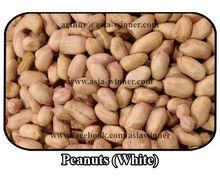 White Peanuts