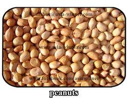 White Ground Nuts
