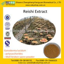 GMP manufacturer supply 100% Natrual Reishi Mushroom Powder Extract / Spore powder