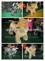 gm59 divertido caballo de dibujos animados paseo en burro de juguete