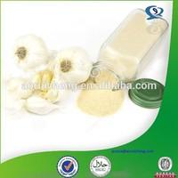 Organic 100% pure natural garlic extract allicin powder