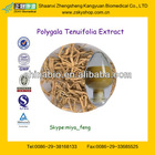 High Quality Polygala Tenuifolia Extract from GMP Manufacture